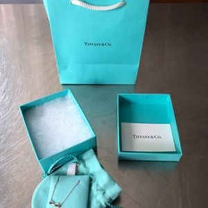 Tiffany & Co. Jewelry - TIFFANY & CO INFINITY STERLING SILVER NECKLACE NWT